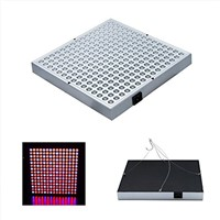 LED Full Spectrum 45W LED Grow Light Indoor Panel For Hydro Veg Flowering Indoor Greenhouse Lights Panel