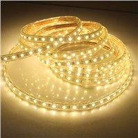 1M 5050 LED Flexible Tape Rope Strip Light Xmas Outdoor Waterproof  EU/US Plug  -Y122