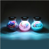 ITimo LED Romantic Bulb Night Light RGB Dimmer Lamp For Mom Lady Girls Creative With Remote Control Rose Flower Bottle Light