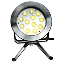 IP68 304  stainless  underwater led lights ,36w Pool light for swimming or pool light  decoration