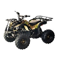 Small ATV 125cc Beach Buggy