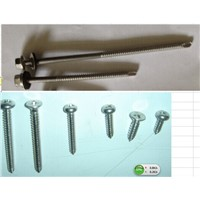 Stainless Steel Self Drilling (tapping)  Screw