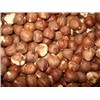 Top Quality Hazel Nuts for Sale