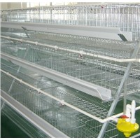 a Type 4 Tiers 160 Chicken Battery Cages Chicken Farm Breeding Used