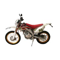 Strong and Vigorous 250cc dirt bike CD110-HJ