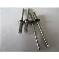 China Stainless steel closed round blind rivets