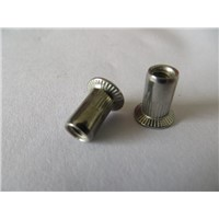 China Stainless steel countersunk head  rivet nuts
