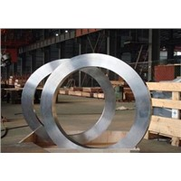 Titanium ring for axle bearing