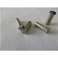 China Stainless steel welding studs