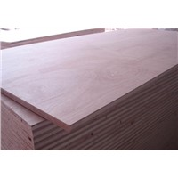 Plywood for formwork and shuttering