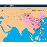 railway logistics from China to Uzbekistan