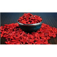 Healthy Organic Goji Berry