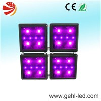 best COB led grow panel for hydroponics
