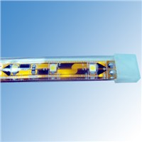 IP68 SMD3528 DC12/24V LED Flexible Ribbon Strips