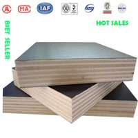 GIGA 18mm film faced  plywood construction timber