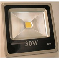 Durable Aluminum 30W LED Floodlight, LED Flood Lights,COB LED Flood Light