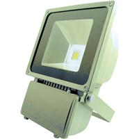 High Power 50W 80W 100W 200W Outdoor LED Floodlight