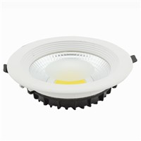 20W High Power Epistar COB LED Down Light/Retrofit LED Lamp/Spot Light/China Supplier