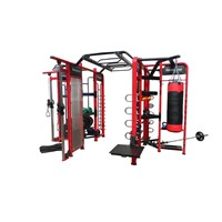 Crossfit Synrgy 360 Multi Functional Gym Equipment