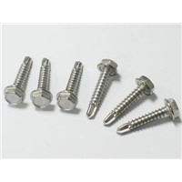 Hot sale Various head self tapping screw