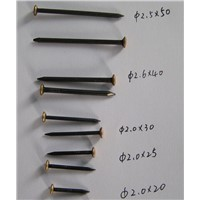 20mm Square Common Wire Nail For Construction