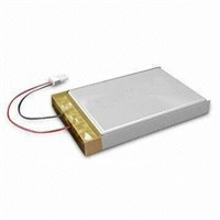 GPS Battery Lithium Polymer Battery 1100mah
