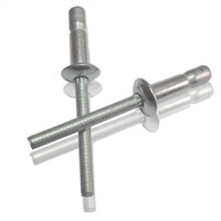 Competitive price all steel cup type rivet/countersunk head rivet