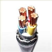 1kV PVC Insulated Control Cable