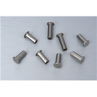Stainless steel pan head semi tubular rivets