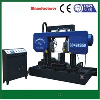 Special sawing machine