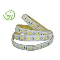 Great IP65 LED Strip