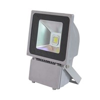 70W LED Flood Lights(CBY-LF70W-F)