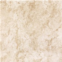 600x600 Ceramic Polished Style Selections Tile