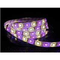 12v smd 5050RGB+5050white led strips light rgbw
