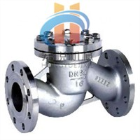 brass swing check valve/ cast iron check valve / check valve*
