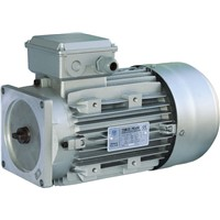 Car Lift 3-phase AC Motors