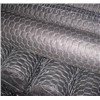 straight twist hexagonal wire netting