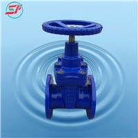 DIN F4 Standard Soft Seal Gate Valve cast iron