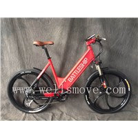 European standard electric bike/bicycle 250W36V