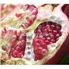 Food and beverage additive Pomegranate fruit powder