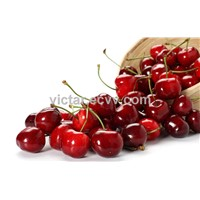 Food and beverage additive Cherry extract