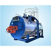 WNS series gas fired steam boiler with high quality and competitive price