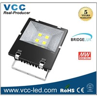 High quality CE Rohs Bridgelux 50W COB Led Floodlight