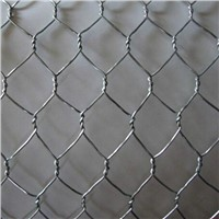 electro galvanied wire mesh