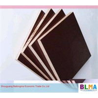 cheap shuttering plywood board