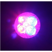 Greenhouse High Power 4X3W Led Grow Light Lamp Bulbs Hydroponics Power Supplier