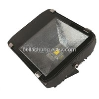 CE Rohs approved IP65 COB high power 100W RGB LED Outdoor Floodlight
