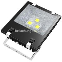 Factory wholesale 220V/110V 120W 10200lm decorative floodlight led