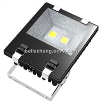 High quality EPIstar chips Waterproof Outdoor 100W park led flood lamp