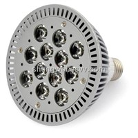 PAR 38 LED Spotlight (SW-P38-14W)